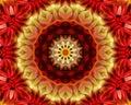 Floral Yoga mandala