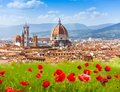Florence duomo and giotto s campanile in poppy flowers Royalty Free Stock Photos