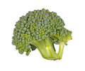 Floret of broccoli isolated against white Stock Photos
