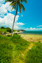 Florida keys beautiful along the shoreline with palm tree and bay view Stock Images