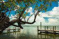 Florida keys scenic view of the along a small boat dock Stock Photography