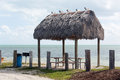 Florida Keys seven mile bridge rest area Stock Photos
