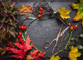 Florist table for making autumn decorations with leafs shears and ribbon fall background copy space Royalty Free Stock Photos