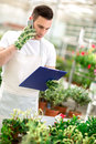 Florist taking order in greenhouse over mobile Royalty Free Stock Photo