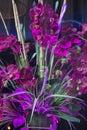The florist a wonderful purple bouquet as seen through a shop window in midtown manhattan Royalty Free Stock Photos