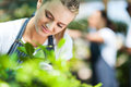 Florist working garden Royalty Free Stock Photos