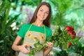 Florists Stock Foto
