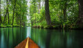 Flow line Spree Forest near Berlin traveled on a wooden paddle boat. Royalty Free Stock Photo
