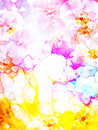 Flower on abstract color background. Pink and yellow color.