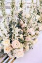 Flower arrangement bouquet of pink roses, ranunculus and white bells and eucalyptus on a white background Royalty Free Stock Photo