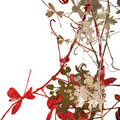 Flower Art on White Royalty Free Stock Photo
