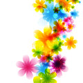 Flower background colorful