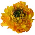 Flower background, macro of orange, yellow, green petals Royalty Free Stock Photo