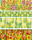Flower background set Royalty Free Stock Images