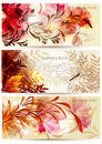 Flower backgrounds vector set Stock Image