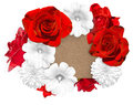Flower banner. Bright red roses and white mallow, rudbeckia flower on white background Royalty Free Stock Photo