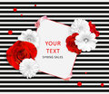 Flower banner on the white black striped background. Red roses, white mallow, rudbeckia flowers and square for text Royalty Free Stock Photo