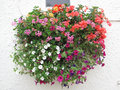 Flower Basket Against a Stucco Wall Royalty Free Stock Photo