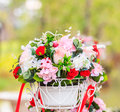 Flower in the basket Royalty Free Stock Photo