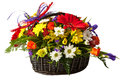 Flower in a basket beautiful bouquet of colorful spring Royalty Free Stock Image