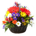 Flower in a basket beautiful bouquet of colorful spring Royalty Free Stock Images