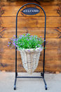 Flower  basket with welcome sign Royalty Free Stock Photo