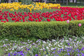 Flower bed in formal garden Royalty Free Stock Photo