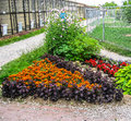 A flower bed in the garden — area limited area to grow ornamental plants most often it is herbaceous flowering Stock Image