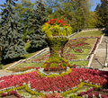 Flower bed in pleasure resort pyatigorsk caucasus russia Stock Photography