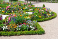 Flower bed in the summer park delightful Stock Image
