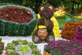 Flower beds in a shape of bear eating honey among different fruits with colorful chrysanthemums. Parkland in Kiev, Ukraine. Royalty Free Stock Photo
