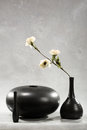 Flower in black vase Stock Images