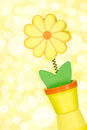 Flower on a blurry yellow background wooden Stock Photos