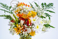 Flower Bouquet in Glass vase Closeup Royalty Free Stock Photo
