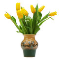 Flower bouquet from yellow tulips in vase isolated on white back background closeup Stock Photos