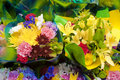 Flower bouquets Royalty Free Stock Images