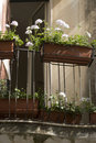 Flower boxes taormina Royalty Free Stock Photos