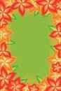 Flower bright green frame