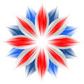 Flower with british flag colors Stock Photos