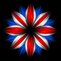 Flower with british flag colors on black Royalty Free Stock Photo