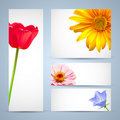 Flower brochure template design Stock Image