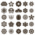 Flower buds design elements vintage isolated on white background Royalty Free Stock Image