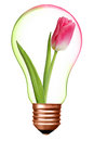 Flower in bulb with bronze base as a symbol of environment protection Royalty Free Stock Image