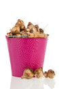 Flower bulbs in pink bucket isolated over white background Royalty Free Stock Photos