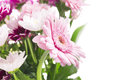 Flower bunch with pink gerberas isolated on wihte background Stock Photography