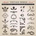 Flower calligraphic vintage royal design elements Stock Photos