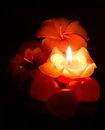 Flower candle on fire Stock Image