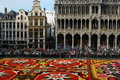 Flower carpet in brussels belgium designed from begonias Royalty Free Stock Image