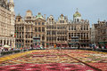 Flower Carpet Festival of Belgium in Grand Place of Brussels with its Historical Buildings Royalty Free Stock Photo