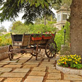 Flower_cart_01 Stock Photography